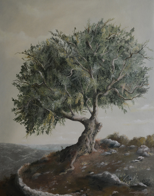 Oil Tree Paintings Painting of an Olive Tree