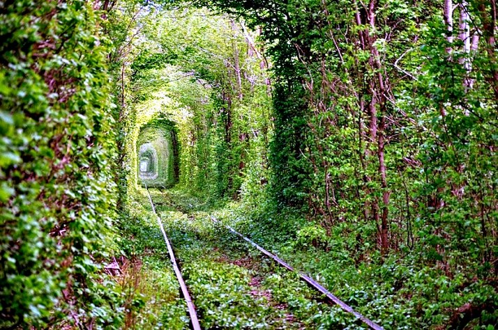The_Tunnel_Of_Love_7.jpg