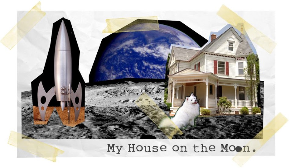 My House on The Moon