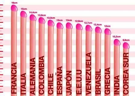 Quedate tranquilo: el largo normal es de 13 centímetros