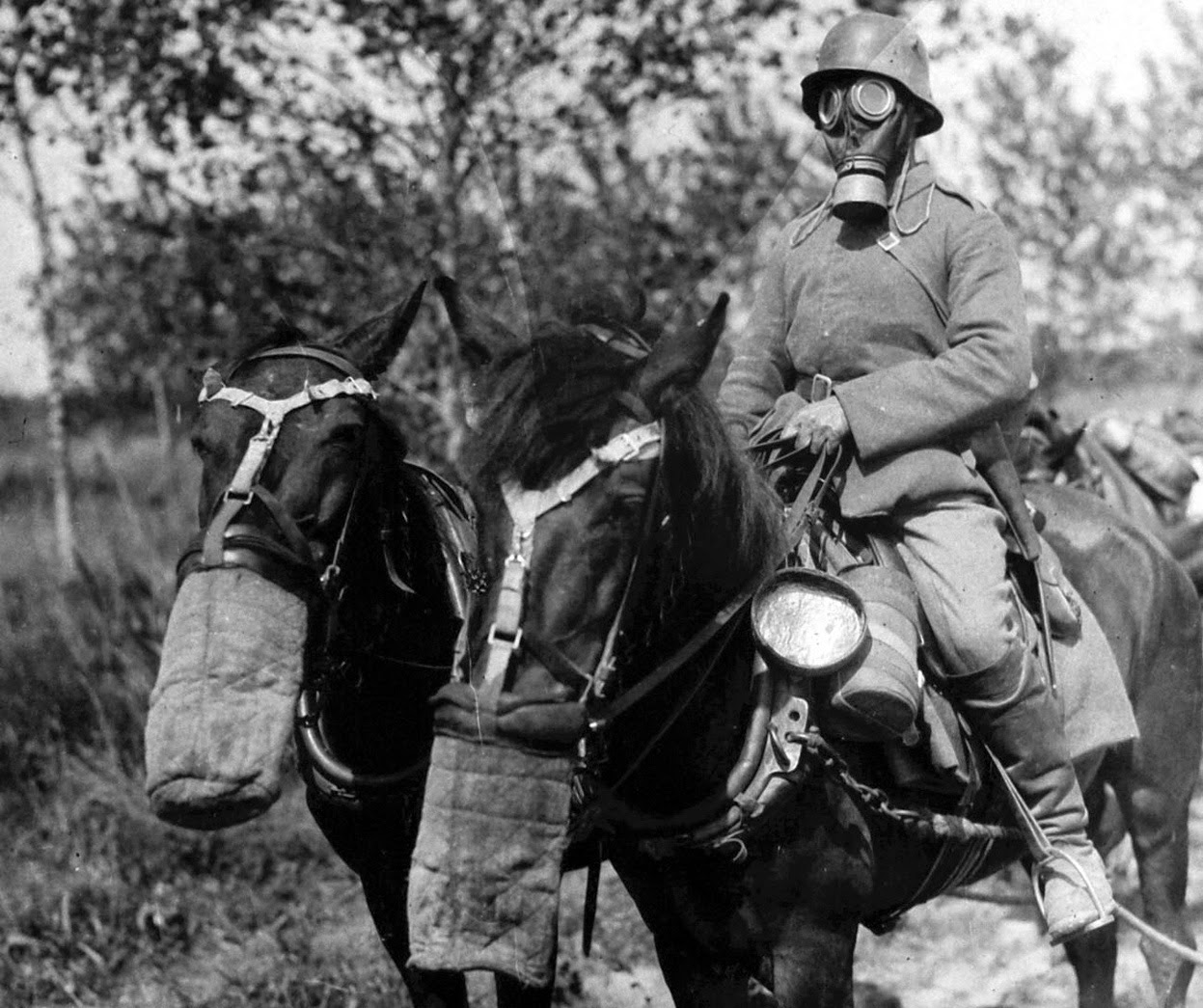 German ammunition column men and horses equipped with gas masks