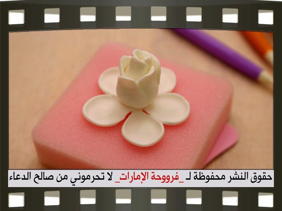 http://2.bp.blogspot.com/-_4_WXHiNxtQ/VHb_Tu66bSI/AAAAAAAAC-E/UEDSkpcab08/s1600/30.jpg
