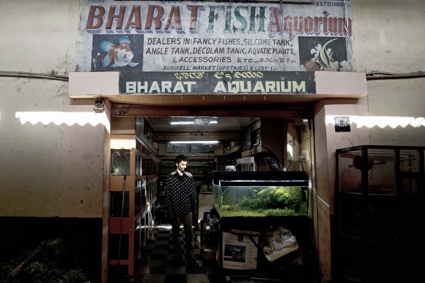 Fish aquarium price in bangalore - Then He Tells Me About His Grandfather A Ticket Collector In The Railways Who Decided To Follow His Passion And Started The Bharat Fish Aquarium In 1954