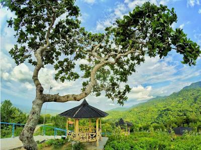 Gazebo di Green Village Gedangsari Gunungkidul