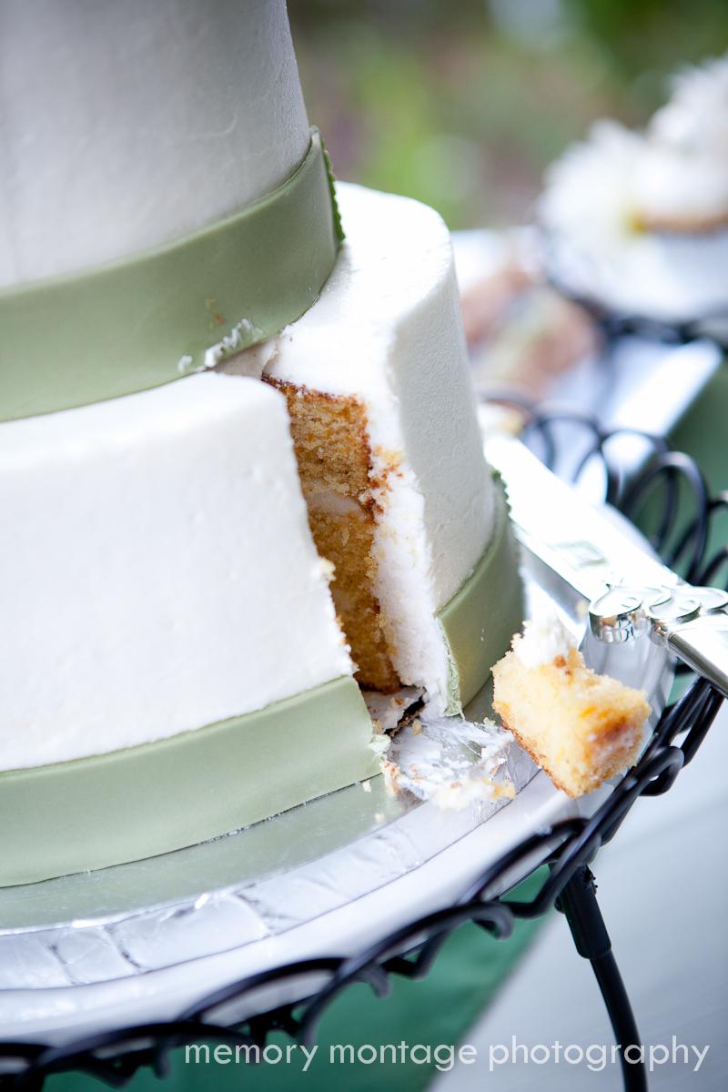 Cake Decorating Yakima Wa : memory montage photography - BLOG: June 2011