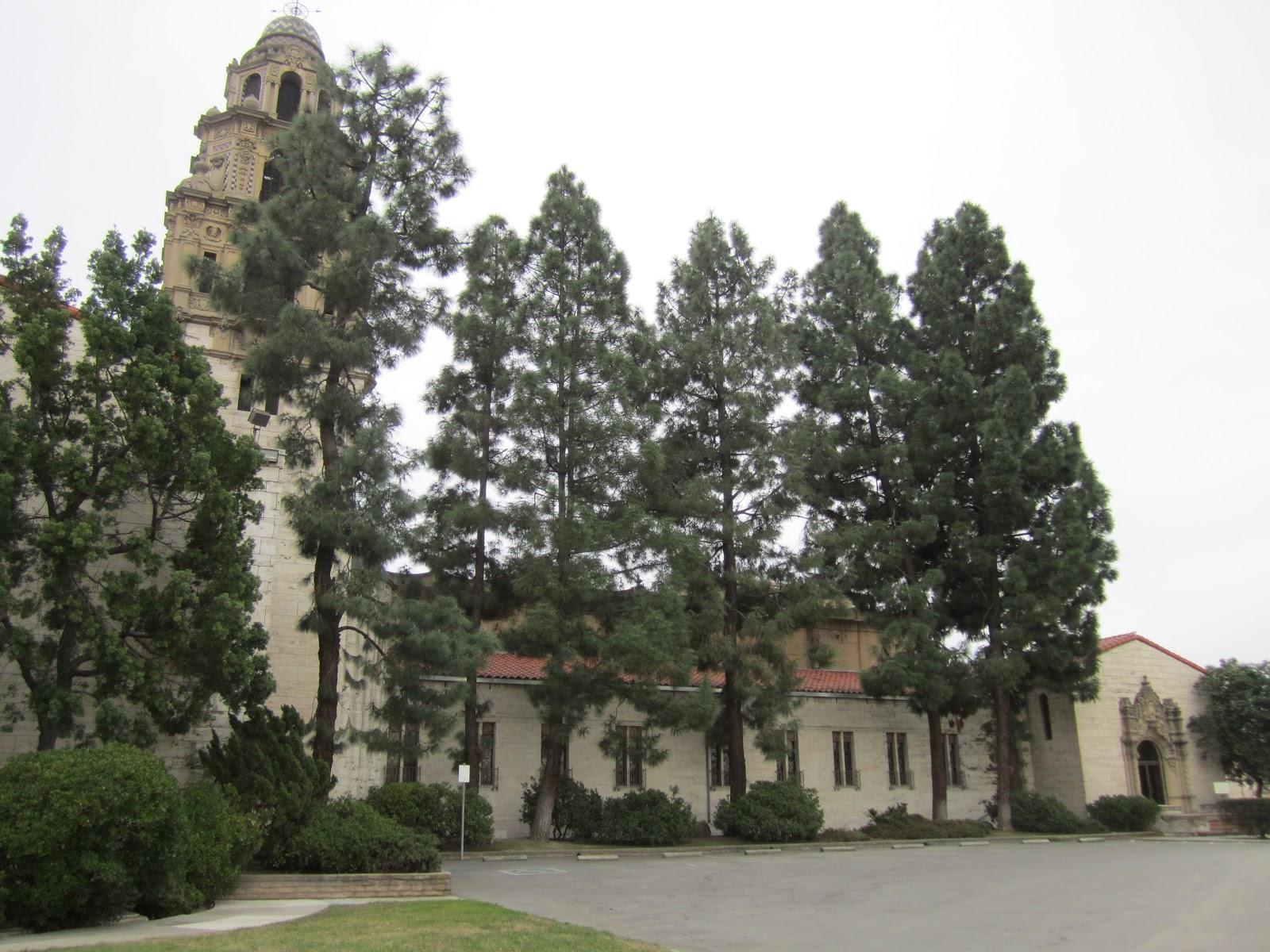 Long Beach Cemetery Cherry