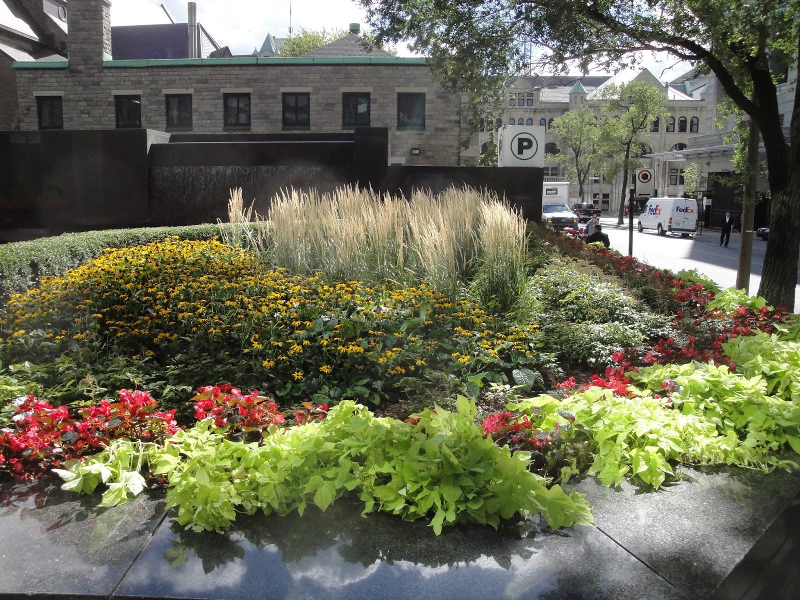 paysagiste strathmore landscape garden tour part 2. Black Bedroom Furniture Sets. Home Design Ideas