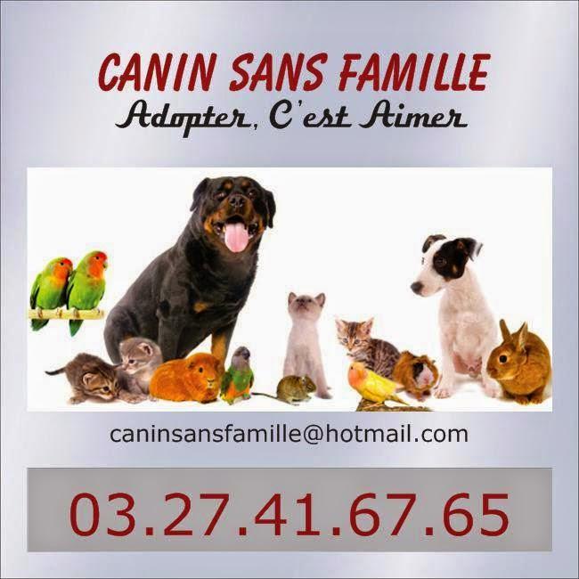canin sans famille la boutique canin sans famille. Black Bedroom Furniture Sets. Home Design Ideas