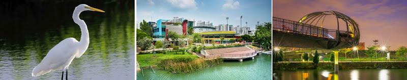 Lifestyle at SengKang Area