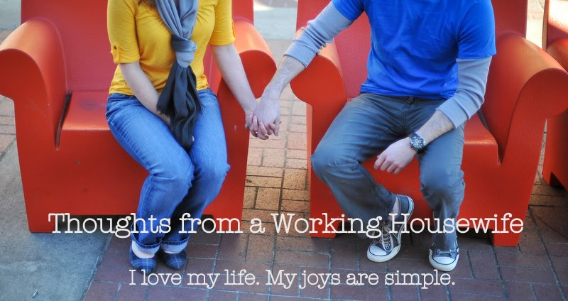 Thoughts from a Working Housewife