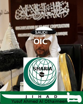 Saudi based and steered OIC violates Human Rights