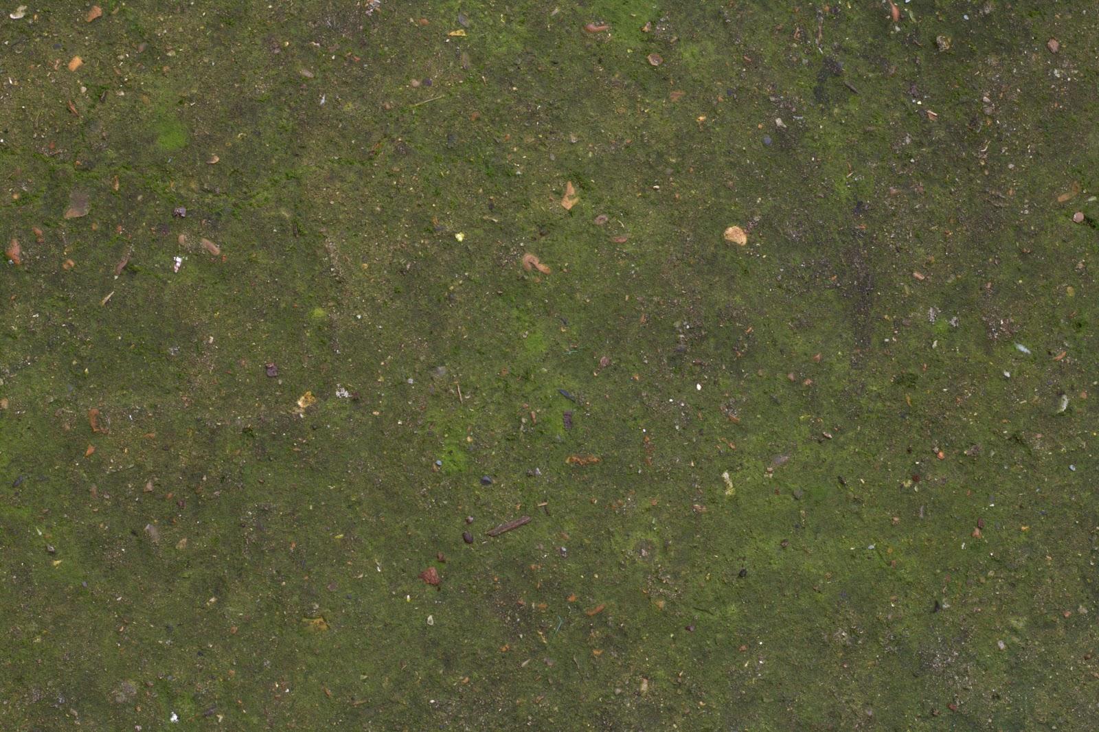 Concrete floor moss dirt texture 4770x3178