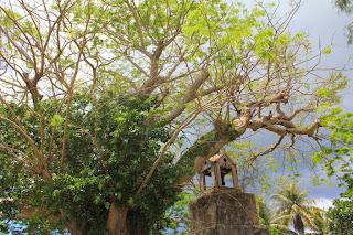 around-the-island-guam