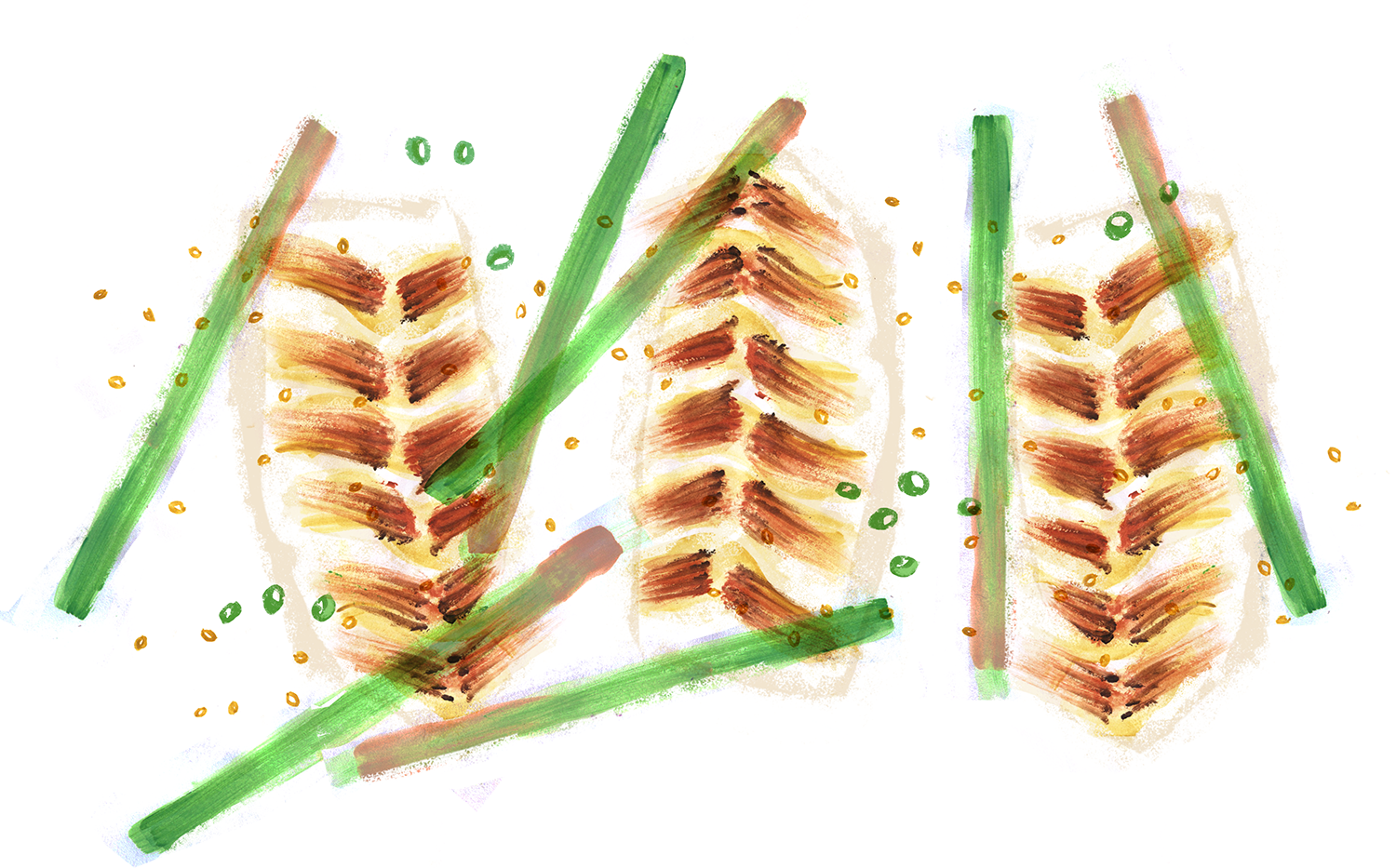 Tilapia with miso and scallions, Lauren Monaco Illustration