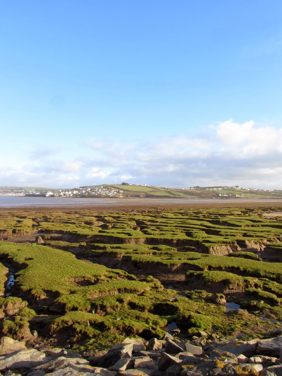 estuary at westward ho