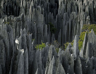 tsingy,tsingy stone forest,stone forest