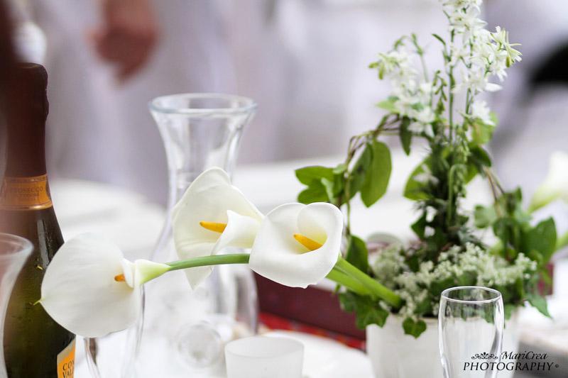 Cena in bianco 2013