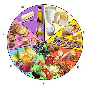 Cadena de Transmisión de las Enfermedades por alimentos
