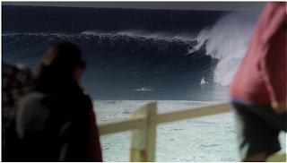 sydney bronte surf