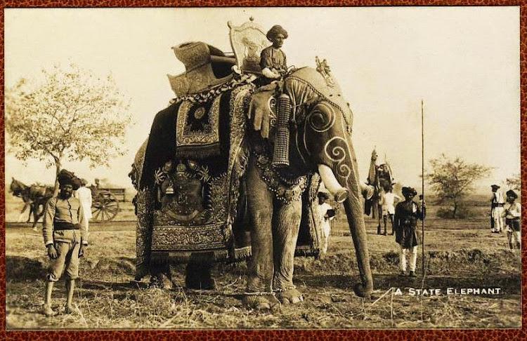A State Elephant - c1920's