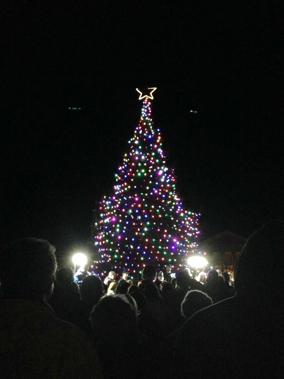the hawkins family: Dartmouth Tree Lighting