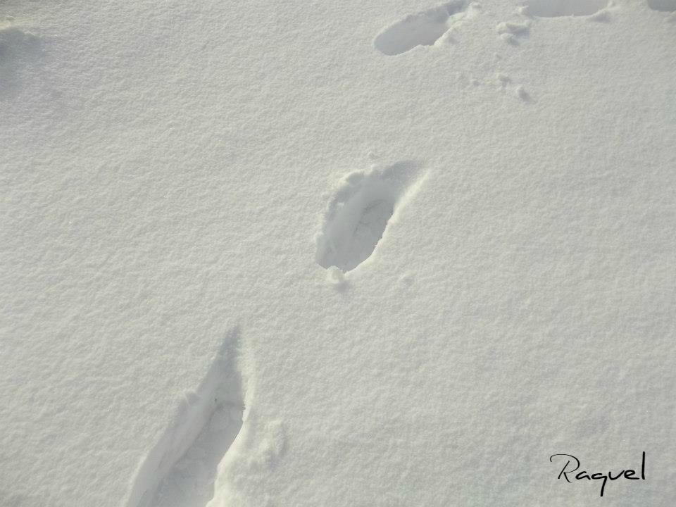 caminando en la nieve