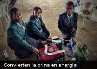 Cuatro jóvenes africanas presentaron el prototipo de una máquina generadora de energía a partir de la orina. Lo más sorprendente, tres de ellas tienen sólo 14 años y la cuarta tiene 15 años de edad. Cada año en Lagos, Nigeria, se organiza el movimiento Maker Faire Africa. En la edición de este año, causó sensación el aparato de Duro-Aina Adebola, Akindele Abiola, Faleke Oluwatoyin y Bello Eniola. Con sólo un litro de orina (la mitad de lo que produce un ser humano diariamente), el generador proveerá 6 horas de electricidad. El proceso consiste en separar el hidrógeno de laafric orina