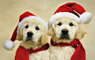 Listo para Santa