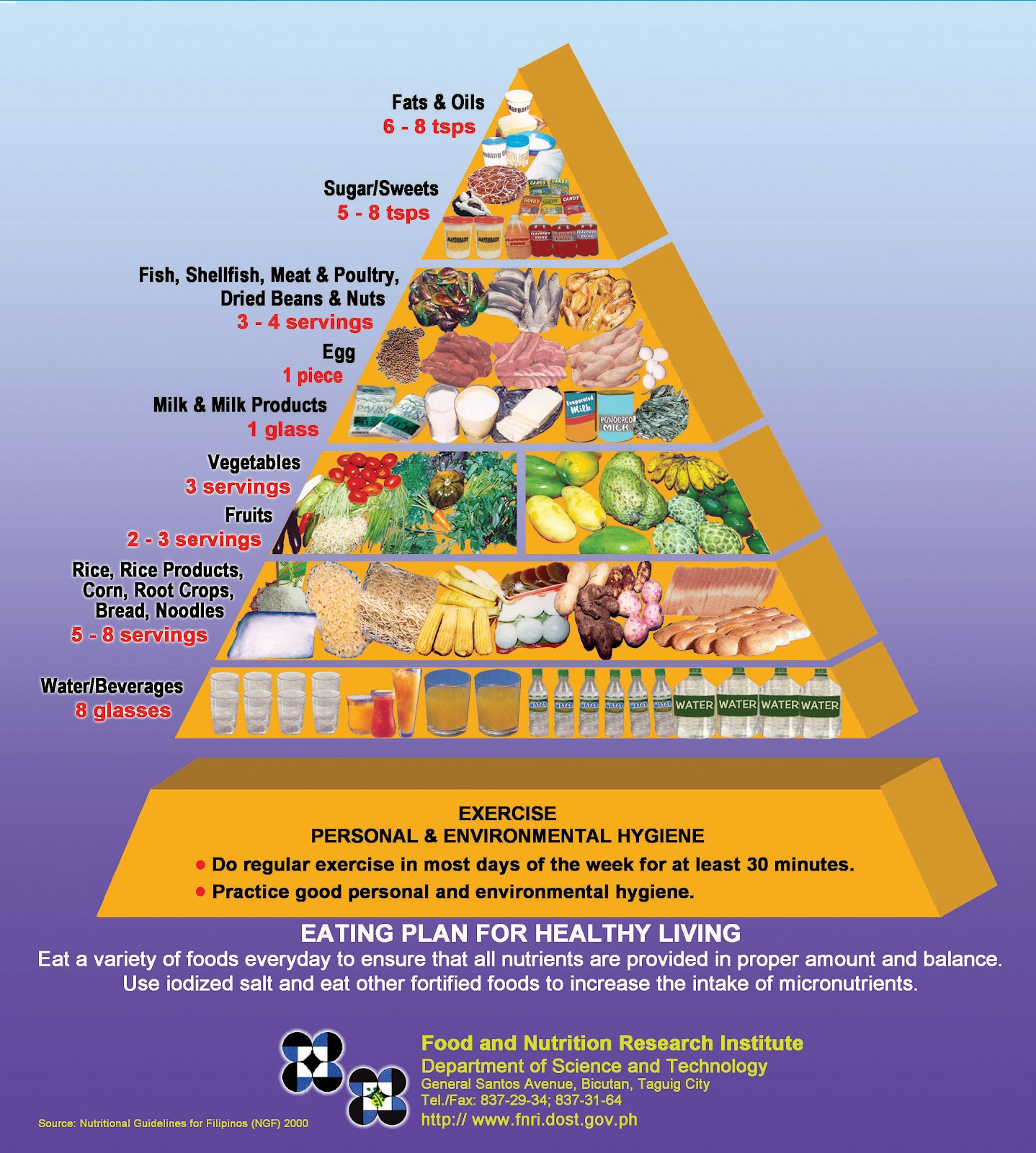 Food guide Pyramid for Vegetarians: Article analysis Essay ...