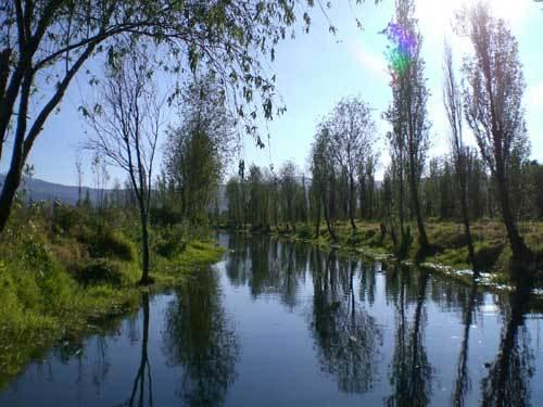 Gundhramns hammer oculus spiritualis para encontrar la for Jardin xochimilco