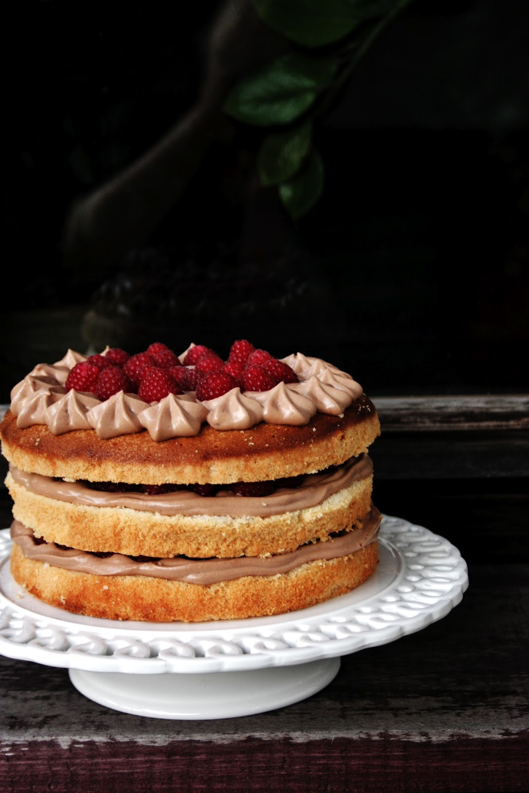 gluten free potato flour sponge layer cake with chocolate mousse and ...