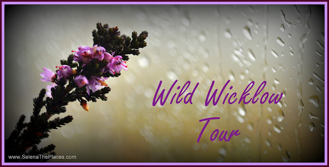 Wild Wicklow Tour in Dublin