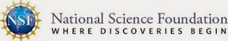 National Science Foundation Internship Program
