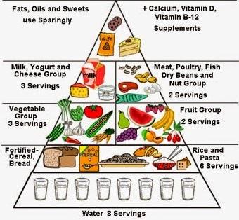Best diet plan for me