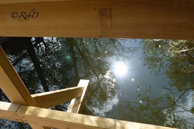 solblänk i vatten. foto: Reb Dutius