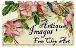 Nättejä kuvia