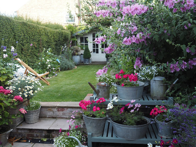 A summer garden update roses and rolltops for Gartengestaltung cottage
