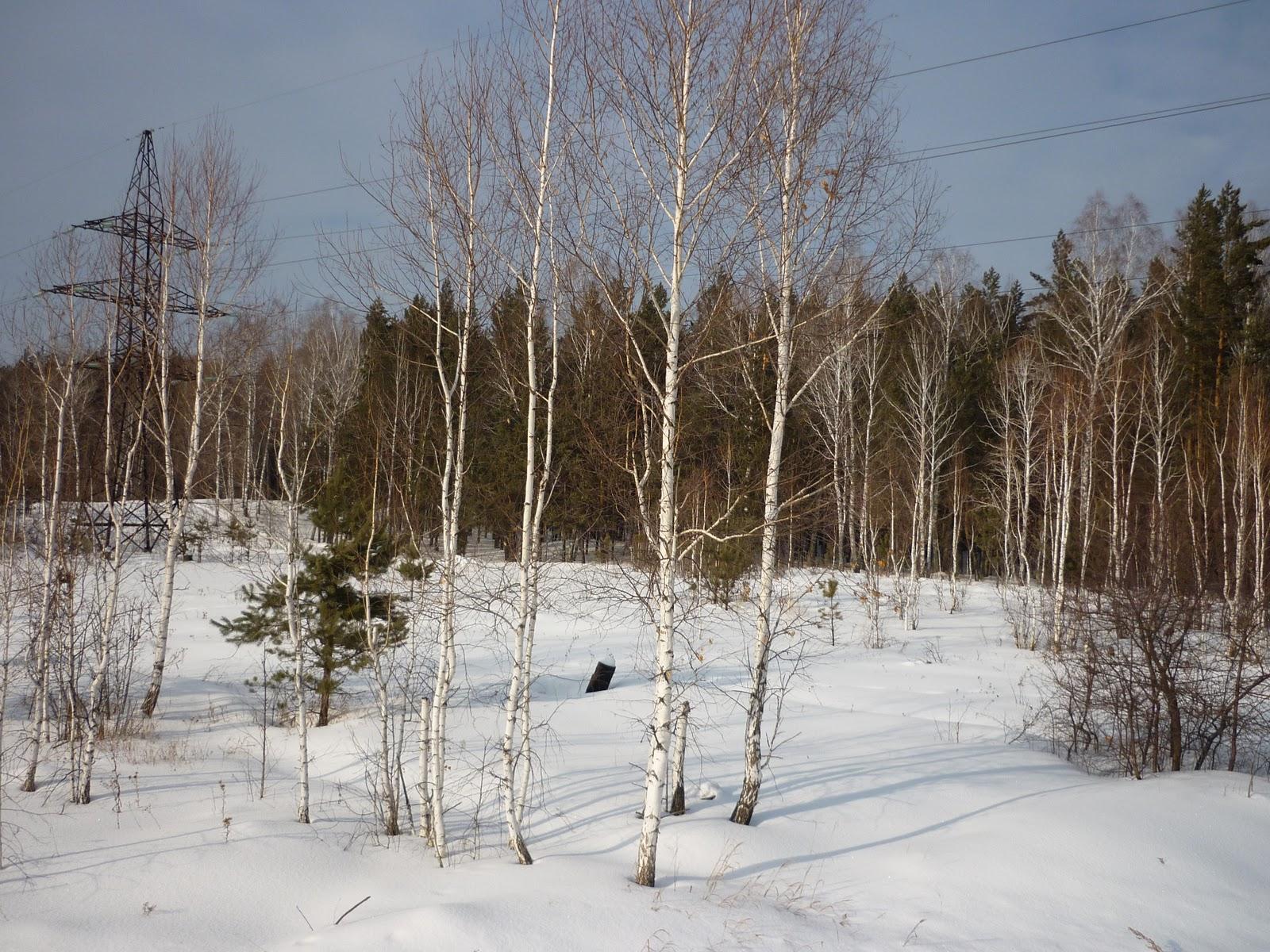 Погода белая холуница на 10 дней кировская область