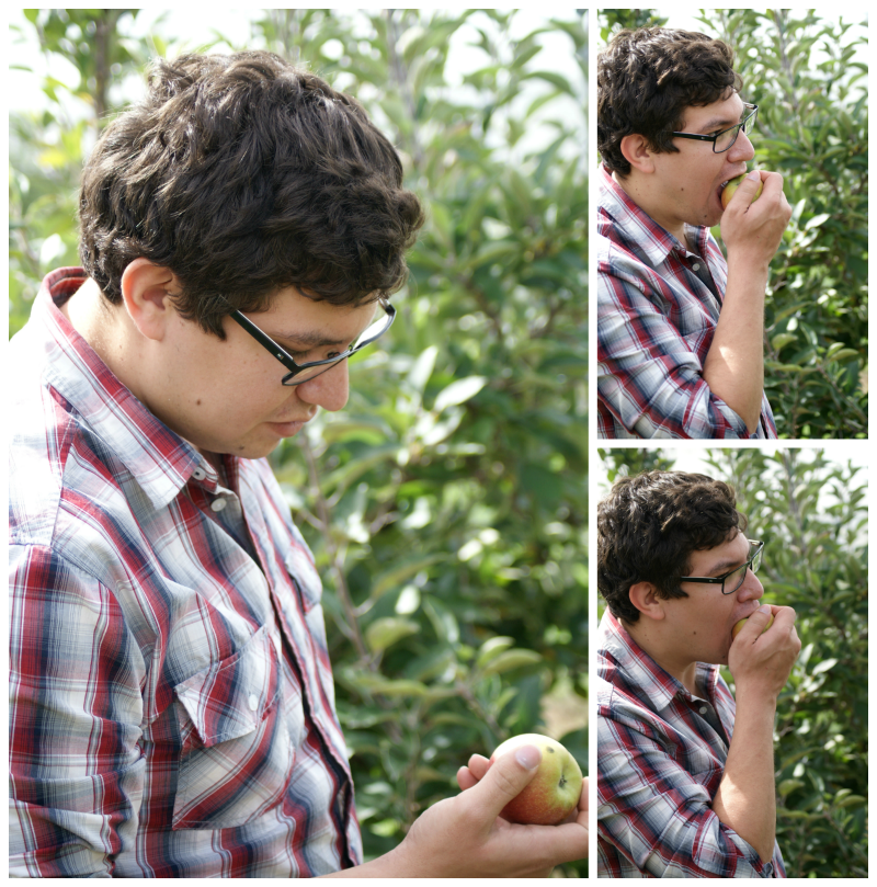 Jesse eating apples whilst Apple Picking at Biplin Springs Orchard