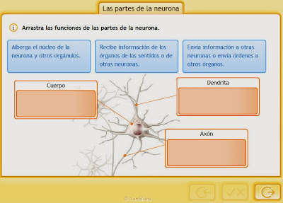 http://www.e-vocacion.es/files/html/143315/recursos/la/U03/pages/recursos/143315_P36/es_carcasa.html