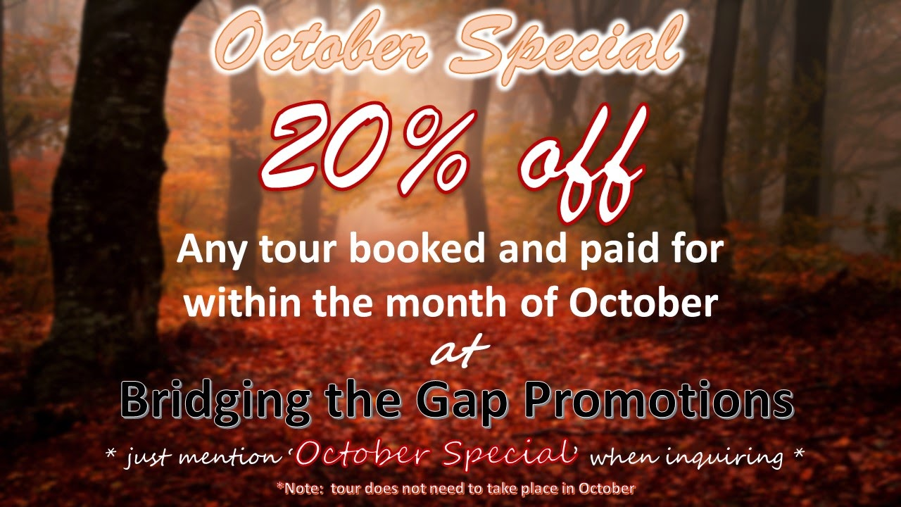Bridging the Gap Promotions SALE