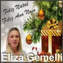 Laranjeiras do Sul:Eliza Gemelli e família desejam a todos um Feliz Natal e um próspero ano novo