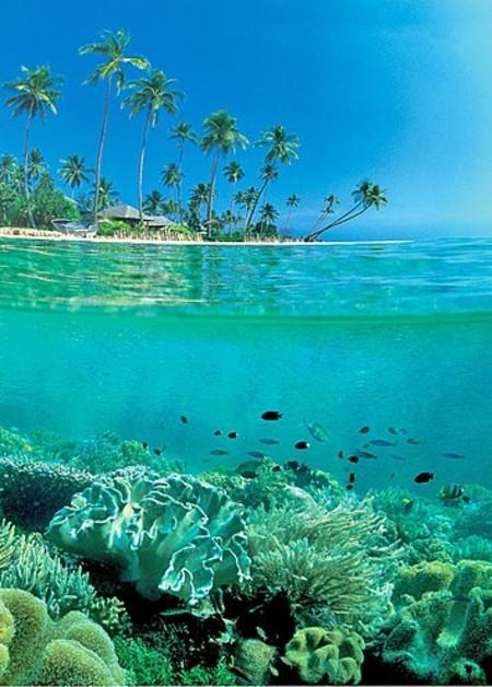 Wakatobi, Southeast Sulawesi, Indonesia: