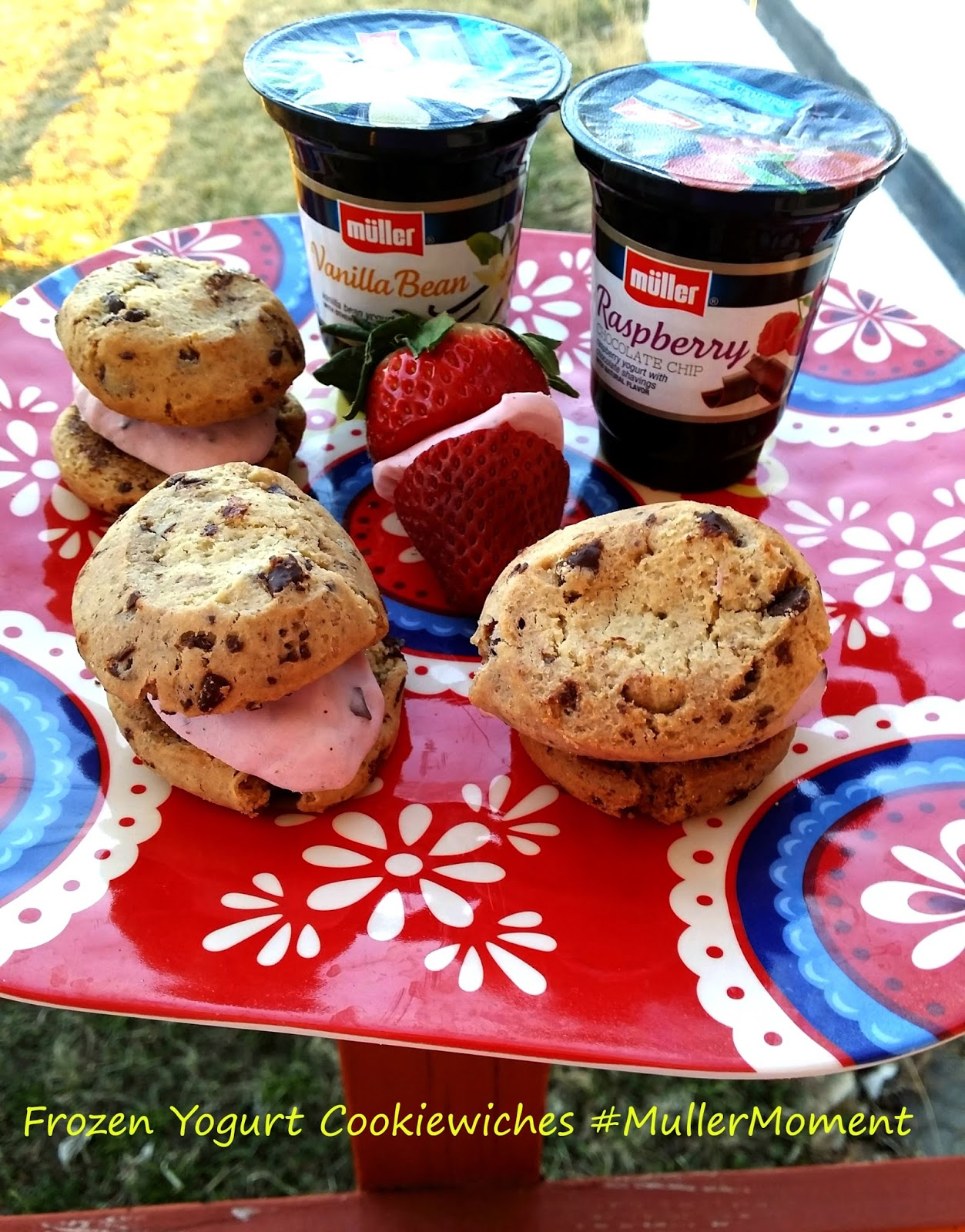 Frozen Yogurt Cookiewiches #MullerMoment #ad