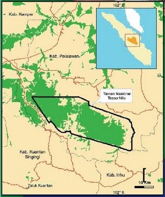 peta taman nasional tesso nilo tntn riau
