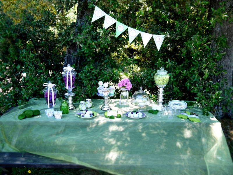girls birthday party decoration ideas. girls birthday party