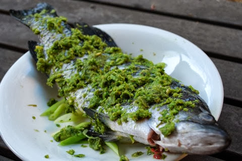 Steamed Barramundi with Minced Ginger and Chinese Celery
