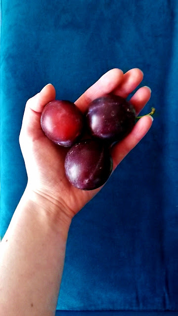 Three plums in hand