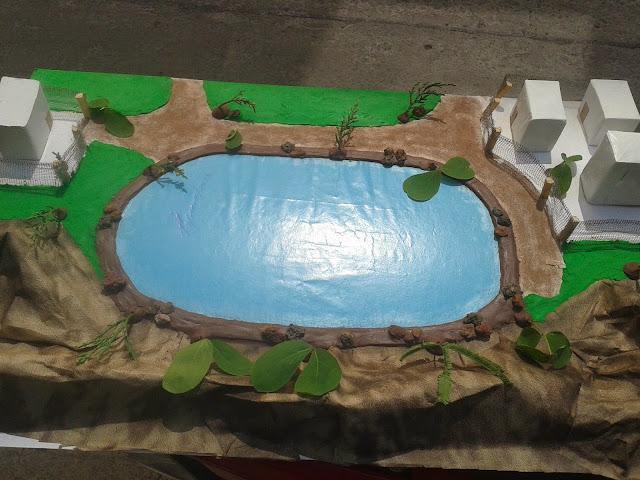 Ecologia escenario 3 for Como se hace un lago artificial