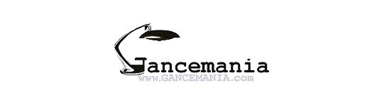 GANCEmania: mobiliario siglo XX y lámparas FASE; interior designers